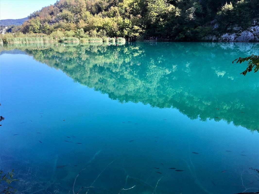 озеро в плитвицких озерах