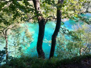бирюзовый цвет воды в Плитвицких озерах
