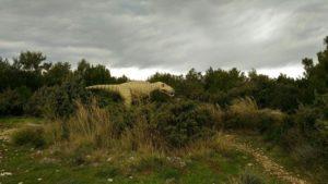 следы динозавров в парке каменяк