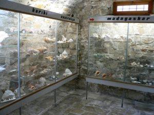 Музей ракушек в макарска