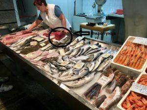 стейки из филе тунца на гриле в хорватии
